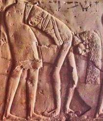 Dancing woman in nwn gesture. Tomb of Kheruef in Assassif. XVIII Dynasty. Photo: www.osirisnet.net