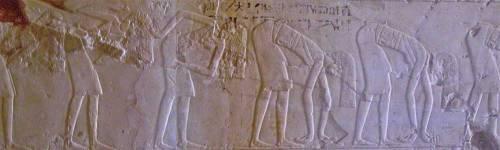 Dancers shaking hair in the Sed Festival. Tomb of Kheruef. Assassif. XVIII Dynasty. Photo: www.osirisnet.net