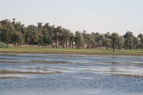Nile fertilising the land of Egypt near of Al-Minya. Photo: Mª Rosa Valdesogo Martín