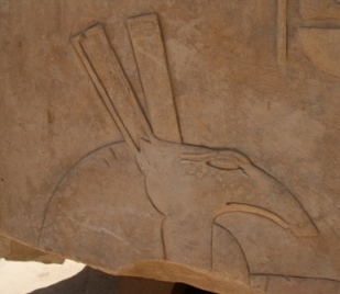 The god Seth. Relief from a block in the Open Air Musuem of Karnak. Photo: Mª Rosa Valdesogo Martín.