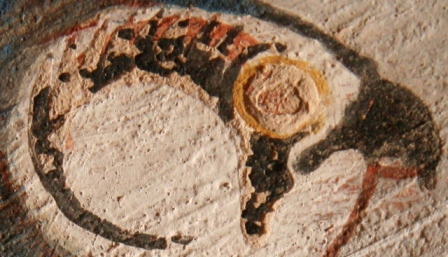Eye of Horus, the falcon god. Detail from an image of Horus in the tomb of Roy in Dra Abu el-Naga. XVIII Dynasty. Photo: Mª Rosa Valdesogo Martín.