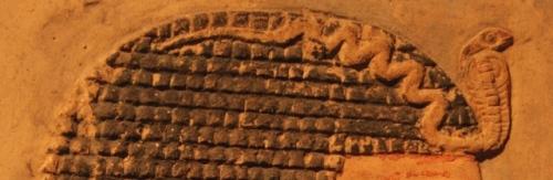 Uraeus on the forehead of Amenhotep I. XII Dynasty. Metropolitan Museum of Art of New York. Photo: Mª Rosa Valdesogo Martín.