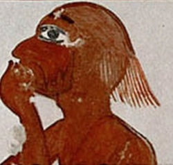 Man with sparse hair. Painting from the tomb of Horemheb. XVIII dynasty. Louvre Museum. Ancient Egypt.