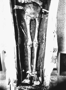 Mummy of Tutankhamun. Ancient Egypt.